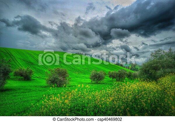 landscape - csp40469802