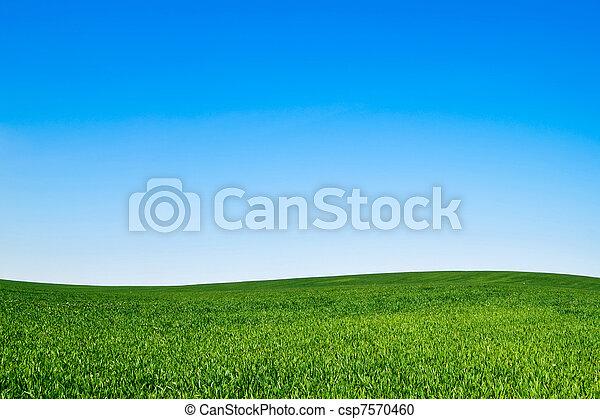 landscape - csp7570460