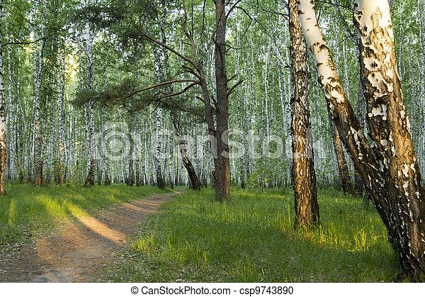Landscape - csp9743890