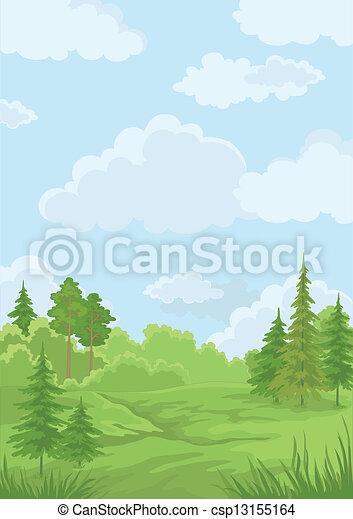 Landscape, summer forest - csp13155164