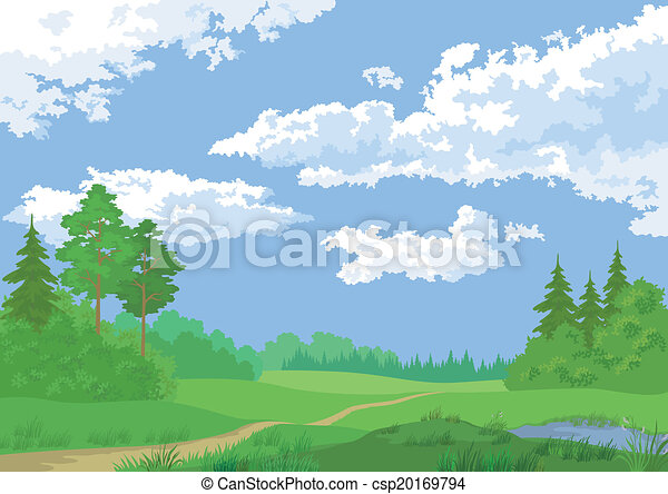 Landscape, summer forest - csp20169794