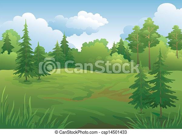 Landscape, summer forest - csp14501433