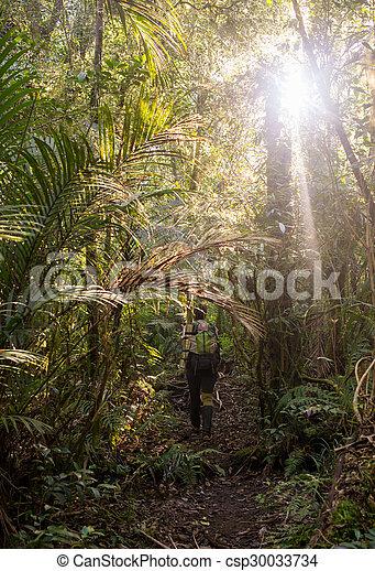landscape, trekkers, natuurlijke , waterval, reiken - csp30033734