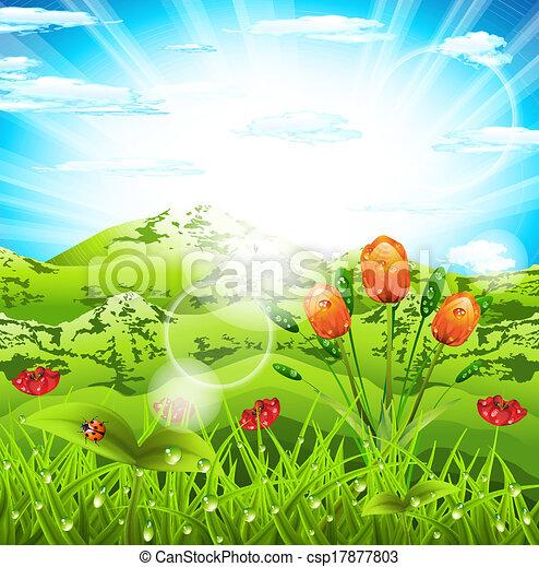 Landscape - csp17877803