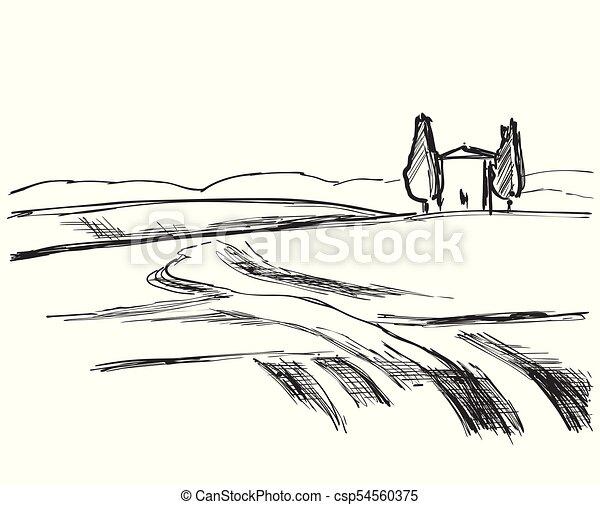 Landscape vector illustration. Hand drawn fields sketch - csp54560375