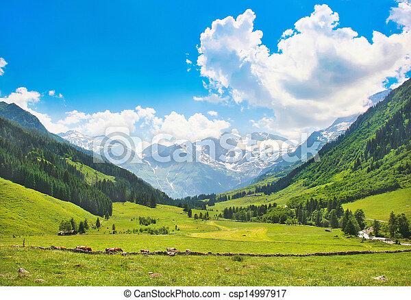 Landscape with Alps in Austria - csp14997917