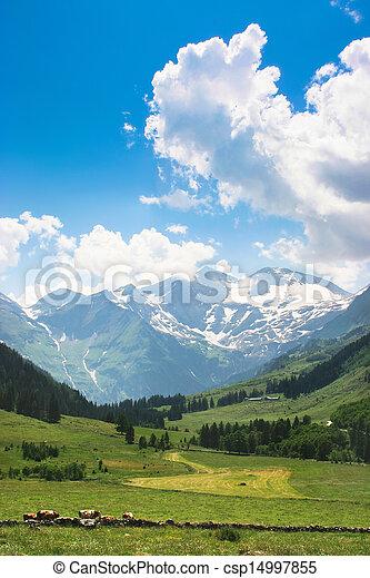 Landscape with Alps in Austria - csp14997855