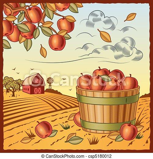 Landscape with apple harvest - csp5180012