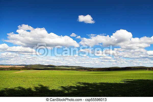 Landscape with beautiful clouds on sky - csp55596013