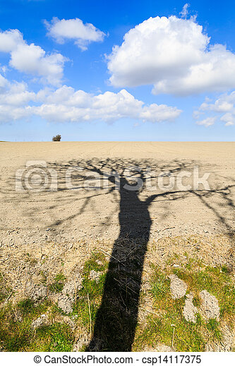 Landscape with beautiful cloudscape and tree shadow - csp14117375