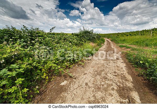 Landscape with dirt road - csp6963024