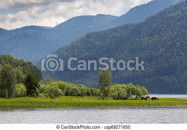Landscape with hills and horses on the shore of the lake - csp69271650
