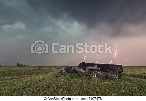 Landscape with lightning striking behind dead tree trunk - csp47407478