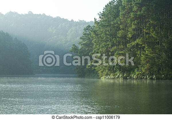 Landscape with pine trees lake - csp11006179