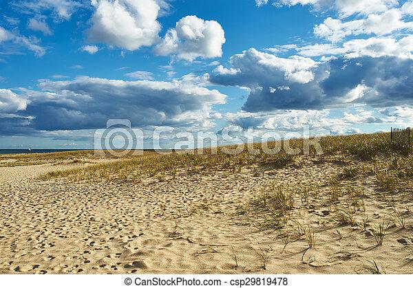 Landscape with sand dunes at Cape Cod - csp29819478