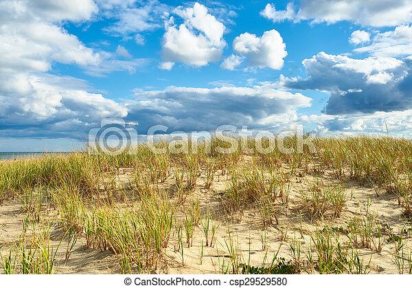 Landscape with sand dunes at Cape Cod - csp29529580