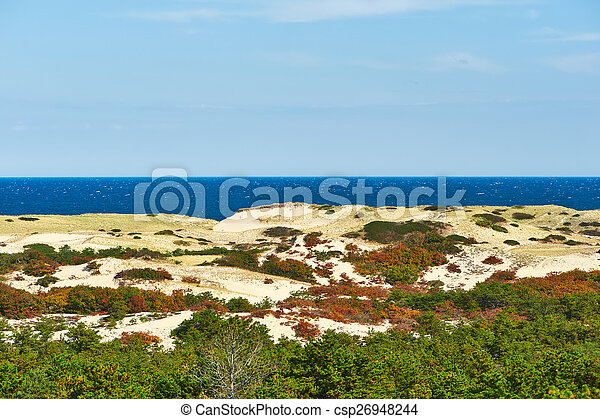 Landscape with sand dunes at Cape Cod - csp26948244