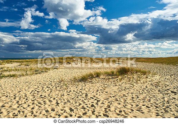 Landscape with sand dunes at Cape Cod - csp26948246