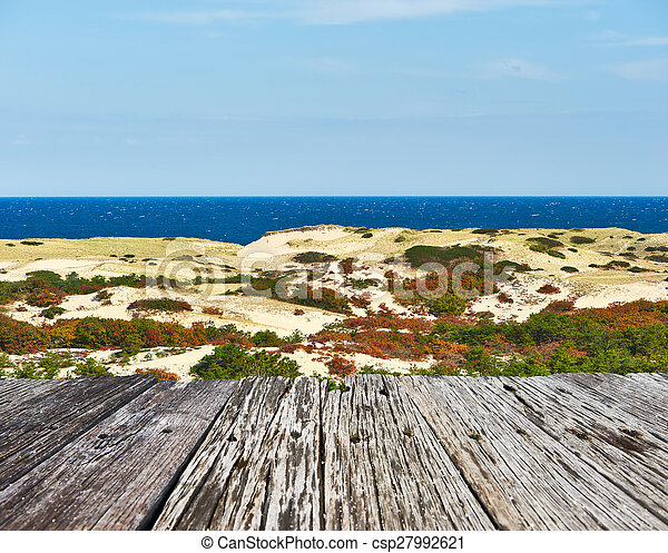 Landscape with sand dunes at Cape Cod - csp27992621