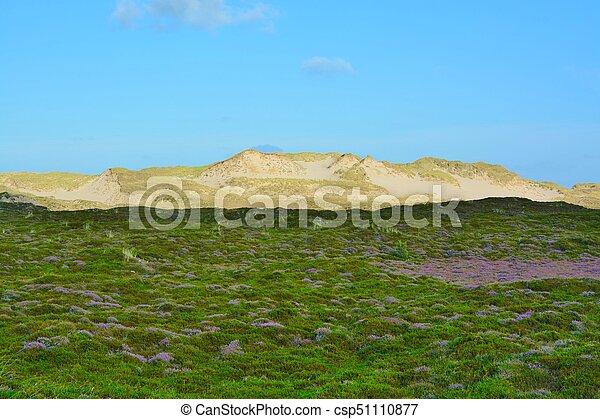 Landscape with sand dunes - csp51110877