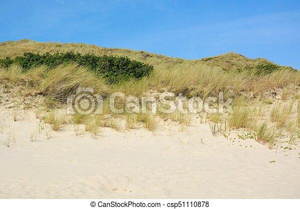 Landscape with sand dunes - csp51110878