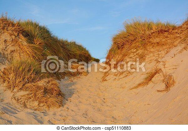 Landscape with sand dunes - csp51110883