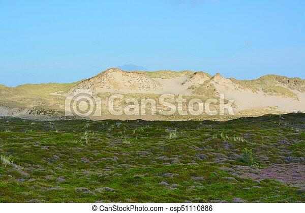 Landscape with sand dunes - csp51110886