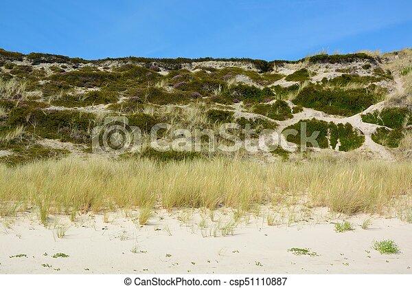 Landscape with sand dunes - csp51110887