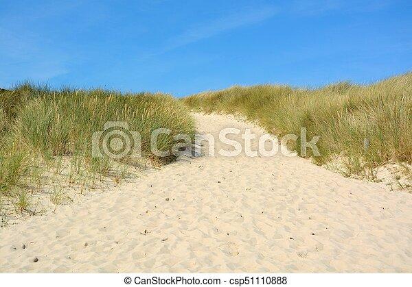 Landscape with sand dunes - csp51110888