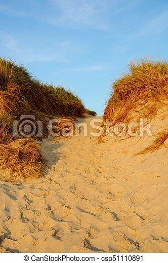 Landscape with sand dunes - csp51110891