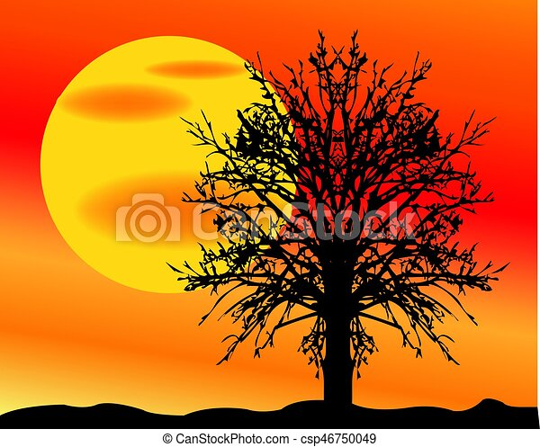 Landscape with sun and tree - csp46750049