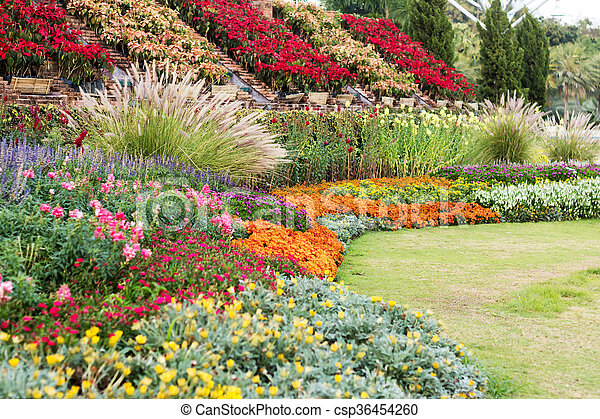 Landscaped garden with flowerbed and colorful plants - csp36454260