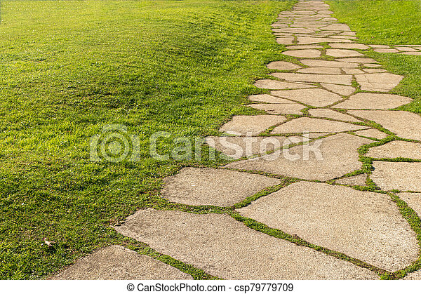 Landscaping of the garden. path curving through Lawn with green grass and walkway tiles. - csp79779709