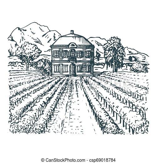 Skizze Der Villa Bauern Haus In Feldern Vektorgrafik