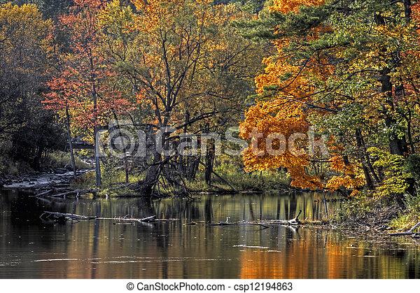 landschaftsbild, fluß, wald, 94, herbst - csp12194863
