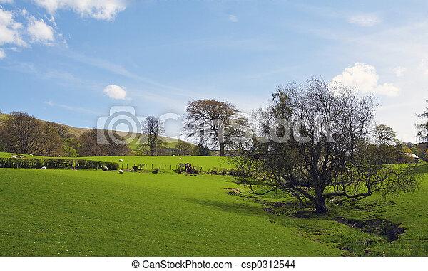 landschaftsbild - csp0312544