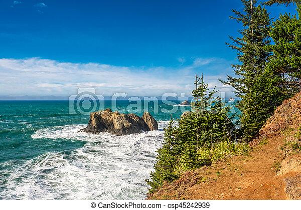 USA pazifische Küstenlandschaft, Erzgon - csp45242939