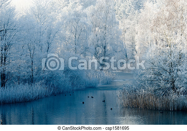 landschaftsbild, winter- szene - csp1581695