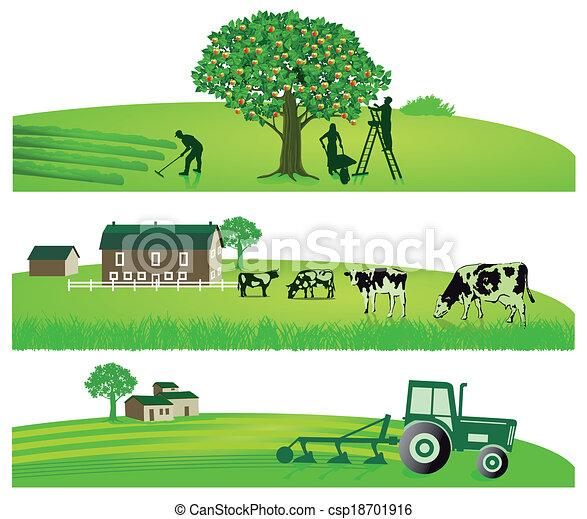 landwirtschaft, kleingarten - csp18701916
