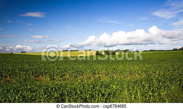 landwirtschaft - csp6784685