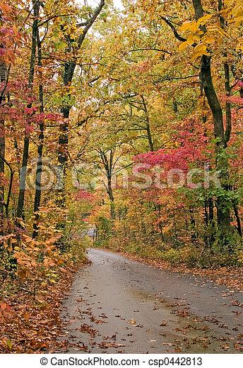 Lane in fall - csp0442813