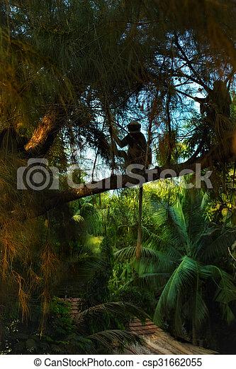 Langurs monkeys - csp31662055