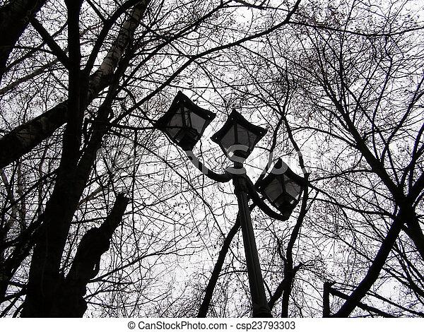 lantern in autumn park - csp23793303