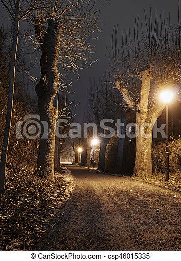 Lantern in the park at night - csp46015335