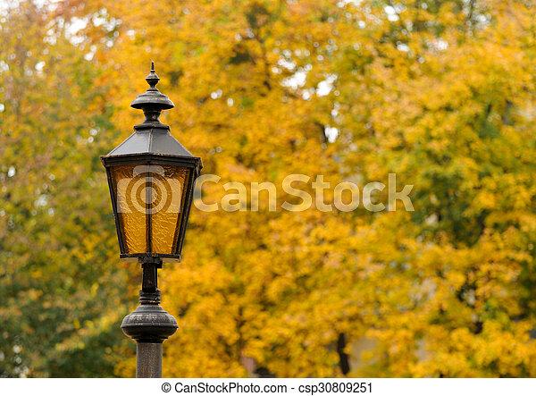 Lantern in the park autumn - csp30809251