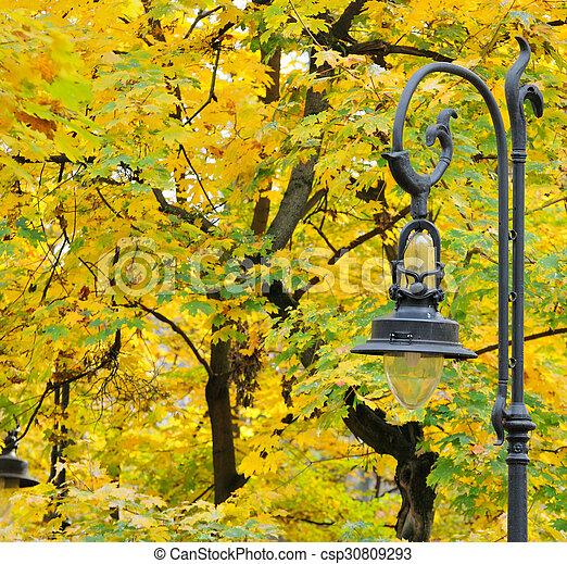 Lantern in the park autumn - csp30809293