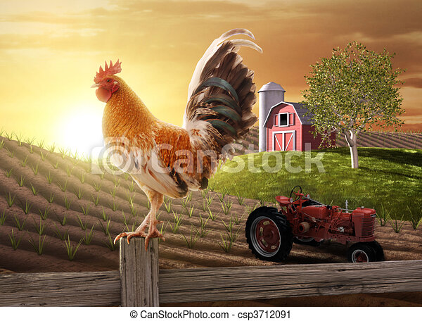 lantgård, land, morgon - csp3712091