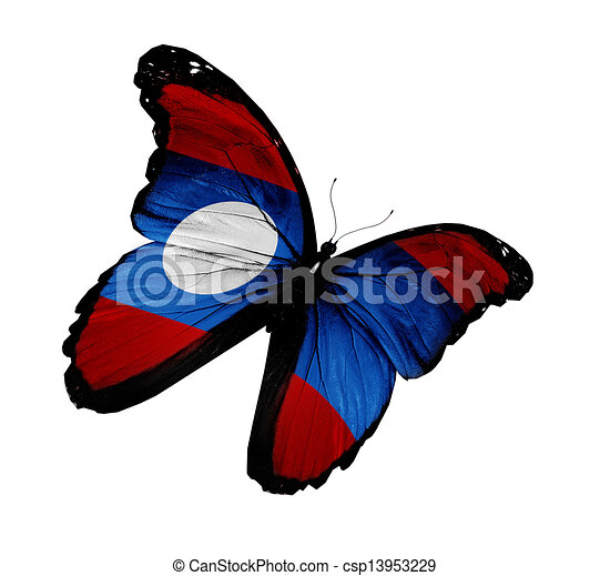 Laotian flag butterfly flying, isolated on white background - csp13953229