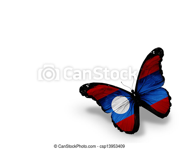 Laotian flag butterfly, isolated on white background - csp13953409
