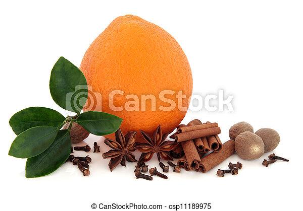 laranja, temperos, fruta - csp11189975
